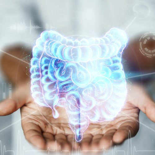 intestino ilustração