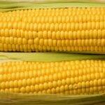 Milho Faz Mal Para Gastrite?