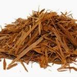 Chá de catuaba - Receitas e dicas