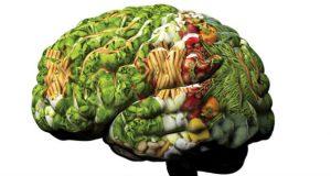 Dieta para cérebro