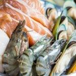 Estudo Sugere que os Frutos do Mar Podem Ser o Segredo para o Envelhecimento Saudável