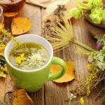 13 Remédios Naturais para Diabetes