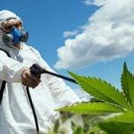 Agrotóxico Causa Câncer? Análises sobre Agrotóxicos e Câncer