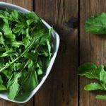Como Plantar Rúcula em Casa - 10 Passos e Cuidados
