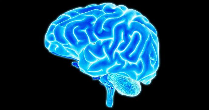 Tem Na Web - Excesso de Gordura na Barriga Pode Fazer seu Cérebro Encolher, Diz Estudo