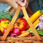 Vegetariano ou Vegano – Entenda as Diferenças
