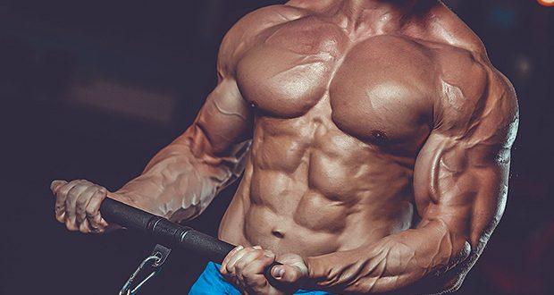 Músculo hipertrofiado