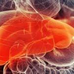 Hepatite Autoimune - O Que é, Sintomas, Tratamentos e Causas