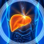 Fígado inchado - Sintomas, causas e como tratar