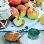 5 Receitas de Geleia de Maçã Diet e Fit