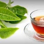 Chá de Goiabeira - Para Que Serve, Indicações e Como Fazer