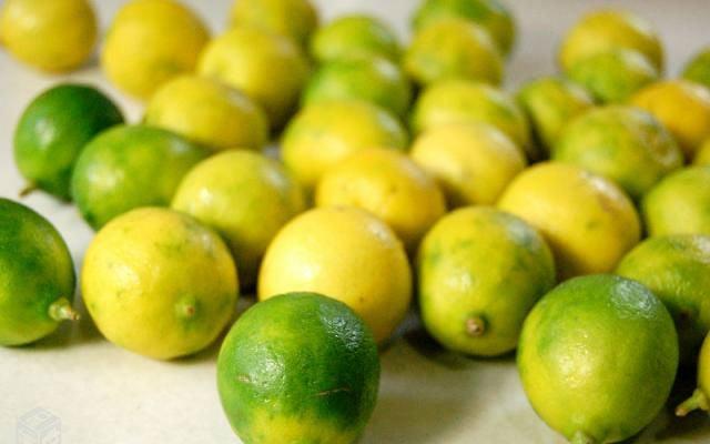 Limão galego