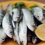 9 Benefícios da Sardinha - Para Que Serve e Propriedades