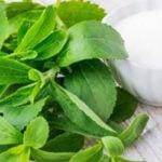 Xilitol ou Stevia - Qual é Melhor?