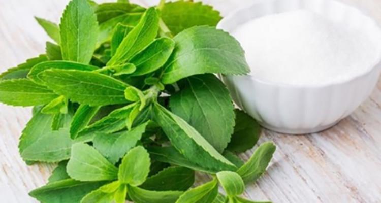 Xilitol ou Stevia
