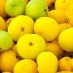 6 Benefícios da Cagaita - Para Que Serve e Propriedades