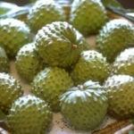 5 Benefícios da Fruta Cherimoia - Para Que Serve e Propriedades