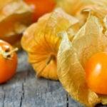 5 Benefícios da Fruta Fisális - Para Que Serve e Propriedades