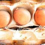 4 Benefícios da Fruta Olho de Boi - Para Que Serve e Propriedades