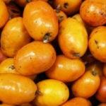 7 Benefícios do Taperebá - Para Que Serve e Propriedades