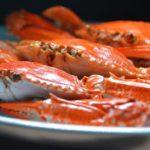Grávida Pode Comer Caranguejo? Siri?