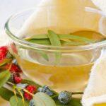 Chá de Eucalipto Emagrece? Faz Mal? Para Que Serve?