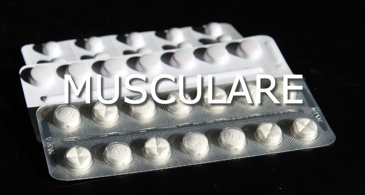Musculare