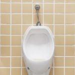 O Que Sua Urina Pode Revelar Sobre Sua Saúde? 7 Sinais Para Ficar de Olho