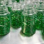 suplemento em cápsulas sendo produzido