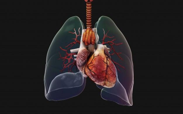 ilustração de um pulmão