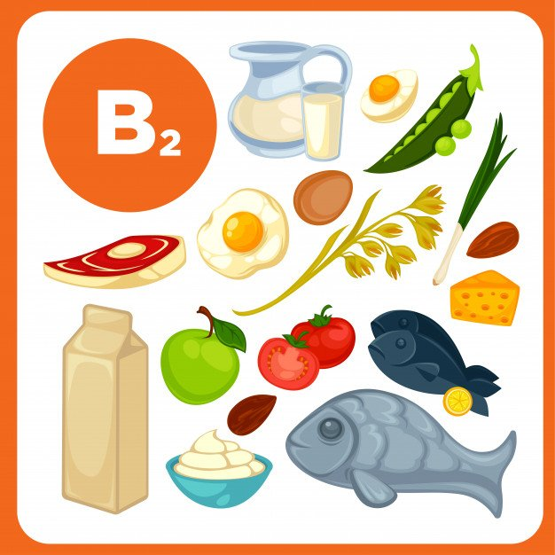 fontes alimentares da vitamina b2