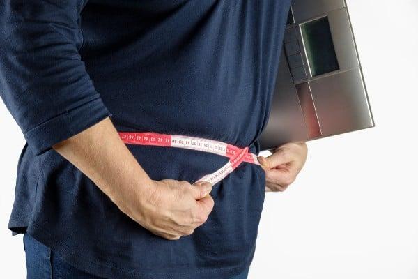 Mungunzá engorda - ganho de peso