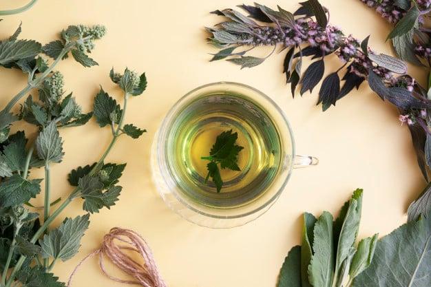 chá de melissa com folha de melissa ao lado