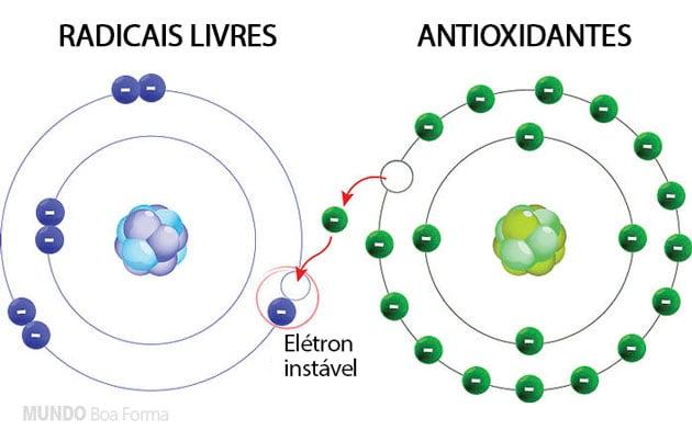 antioxidantes em ação sobre os radicais livres