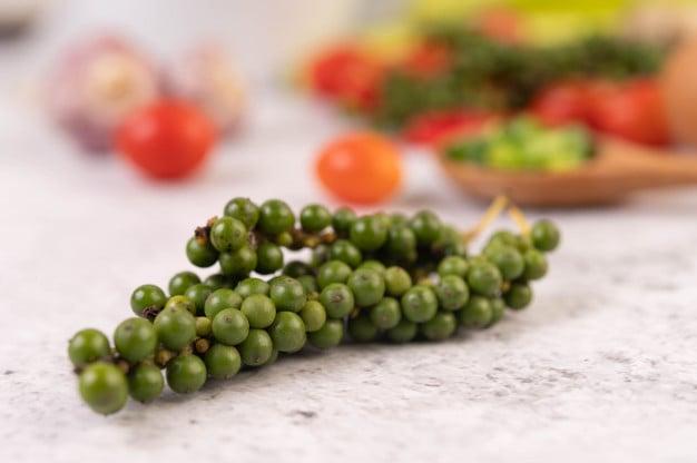 Muda da planta da pimenta do reino