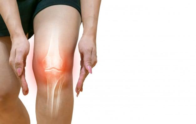 ossos na menopausa e osteoporose