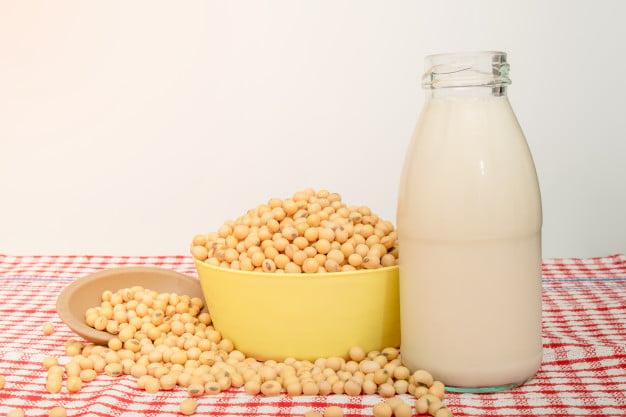 soja em grãos e leite de soja