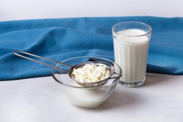 copo de leite fermentado