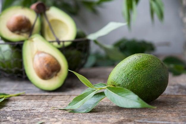 Fruto e folhas do abacateiro