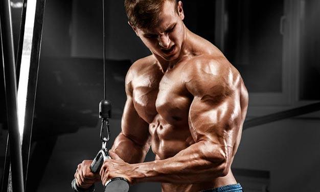 Treino de tríceps pulley