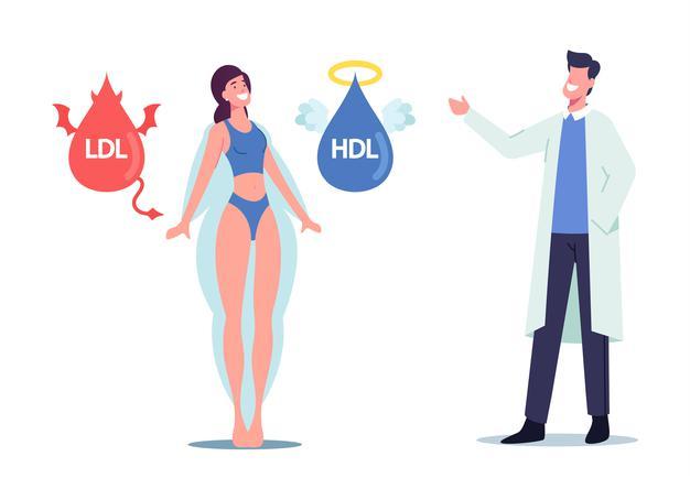 colesterol ldl e hdl