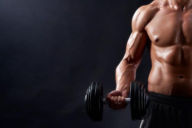 Treino de bíceps completo