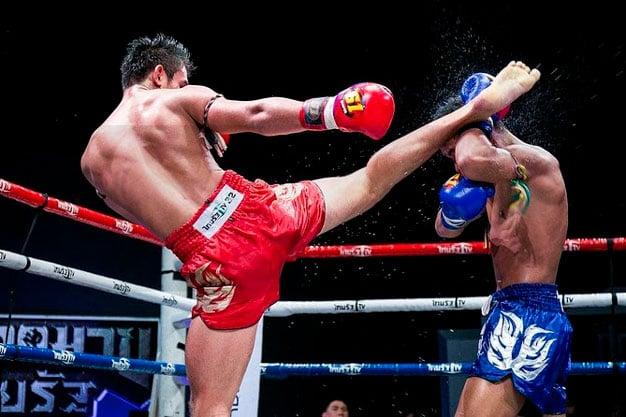 luta de muay thai