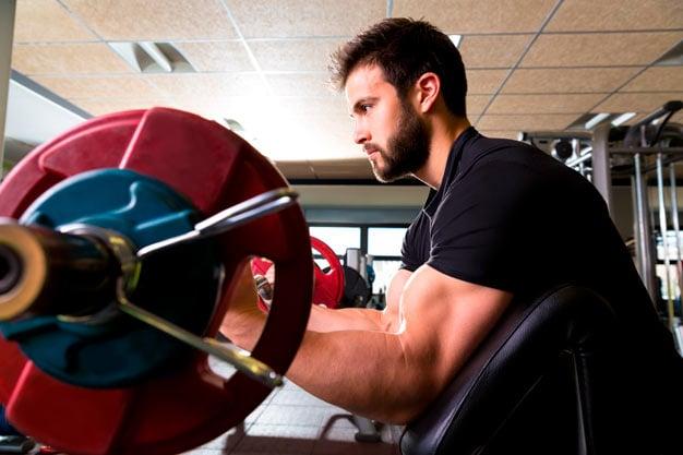 rosca bíceps no banco scott
