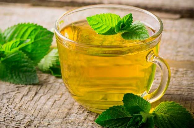 chá da folha de hortelã